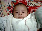 可愛寶貝:2個月大012