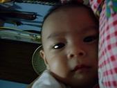可愛寶貝:4個月大002