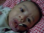 可愛寶貝:4個月大003