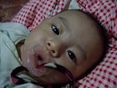 可愛寶貝:4個月大006