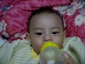 可愛寶貝:4個月大007.j