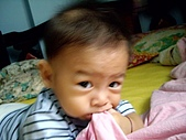 可愛寶貝:7個月大001