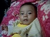 可愛寶貝:4個月大009