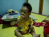 可愛寶貝:7個月大005