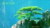 風景名勝:1903529_580424645370961_730239951_n.jpg