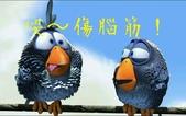 鳳中傳奇*二*:2013-08-13 12.11.41.jpg