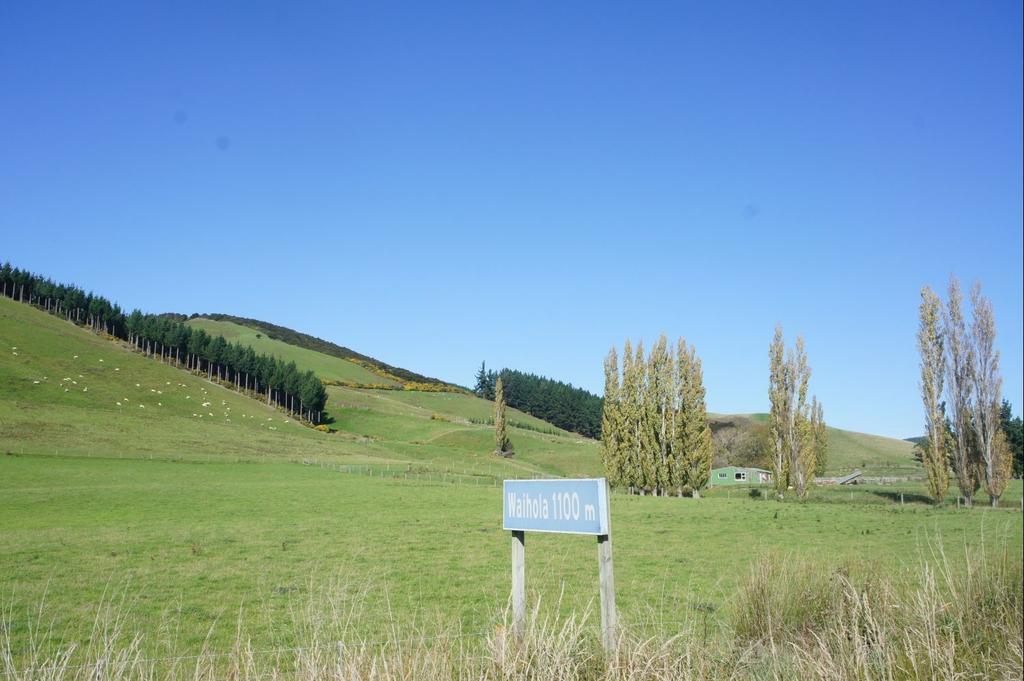 DSC09810.JPG - 紐西蘭