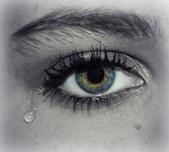 生命對話與心的敏感度訓練:eye-609987_960_720.jpg