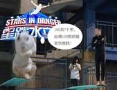 笑笑兔:跳水.jpg
