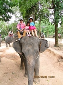 泰國慢遊樂情海Pool Villa 相簿:泰國暹邏象園五合一