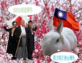笑笑兔:台灣兔.jpg