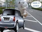 笑笑兔:助跑哥.jpg