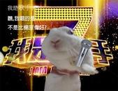 笑笑兔:我是歌手.jpg