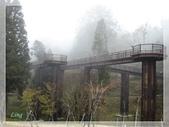 敏敏的生活點滴 8:嘉義阿里山風景區
