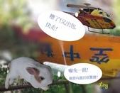 笑笑兔:天外奇機.jpg