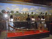 柬埔寨之旅2:DSCI1981.JPG