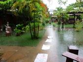 柬埔寨之旅2:DSCI0016.JPG