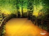 風景圖:風景205.jpg