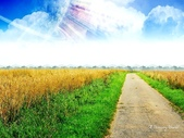 風景圖:風景140.jpg