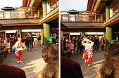 嵯峨嵐山 天龍寺,竹林,渡月橋-金閣寺-祇園(09京阪3):091205-381.JPG