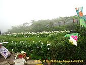 結婚週年休假日in竹子湖09':090323-19.JPG