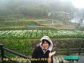 結婚週年休假日in竹子湖09':090323-41.JPG