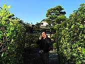 涉成園,東本願寺,大阪道頓堀(09京阪五日遊第四天):091206-045.JPG