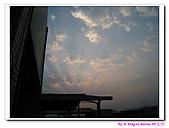 090222 我的黃金鼠&菜園:090222 Beitao13.jpg