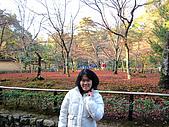 嵯峨嵐山 天龍寺,竹林,渡月橋-金閣寺-祇園(09京阪3):IMG_6179.JPG