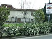 4/2義大利(第五天)普拉多-佛羅倫斯-帕多瓦:080402-0742Firenze佛羅倫斯.JPG