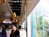 土城桐花&天籟園午餐 & 新埔大蒜水餃:100417 Tung009.JPG