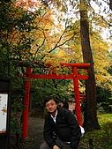 嵯峨嵐山 天龍寺,竹林,渡月橋-金閣寺-祇園(09京阪3):091205-272.JPG