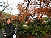 嵯峨嵐山 天龍寺,竹林,渡月橋-金閣寺-祇園(09京阪3):091205-179.JPG