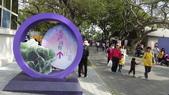 2018台中世界花卉博覽會:后里馬場園區:DSC00125.JPG