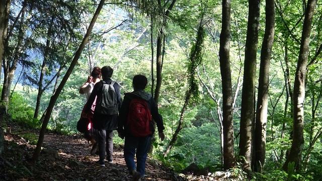 DSC00310.JPG - 八仙山國家森林遊樂區一日健康遊