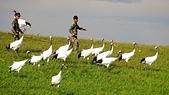 紮龍自然保護區:DSC04549.JPG
