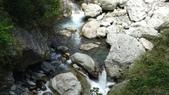 八仙山國家森林遊樂區:DSC00016.JPG