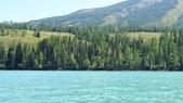 喀納斯湖:DSC00488.jpg