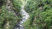 八仙山國家森林遊樂區:DSC00017.JPG