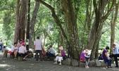 八仙山國家森林遊樂區:DSC00010.JPG