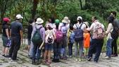 八仙山國家森林遊樂區:DSC00144.JPG