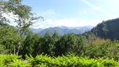 八仙山國家森林遊樂區:DSC00326.JPG