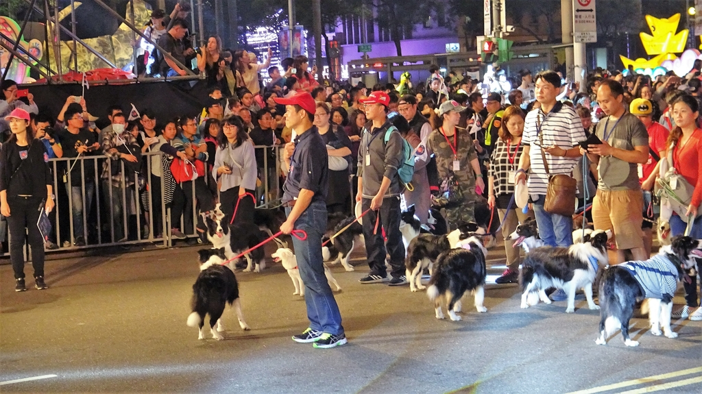 DSC08703.JPG - 2018年台北燈節踩街遊行