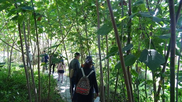 DSC01019.JPG - 2018台中花博之四口之家永續花園