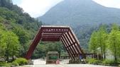 八仙山國家森林遊樂區:DSC00352.JPG