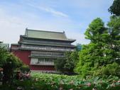 2017年台北植物園荷花池:IMG_5310.JPG