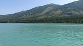 喀納斯湖:DSC00483 (2).JPG