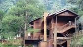 八仙山國家森林遊樂區:DSC00214.JPG