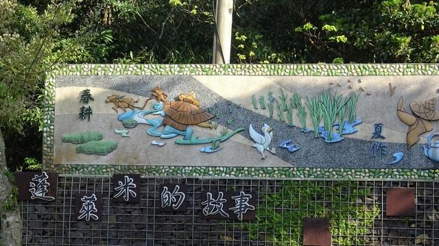 DSC00015.JPG - 2021竹子湖海芋季