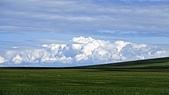 呼倫貝爾大草原:DSC04910.JPG